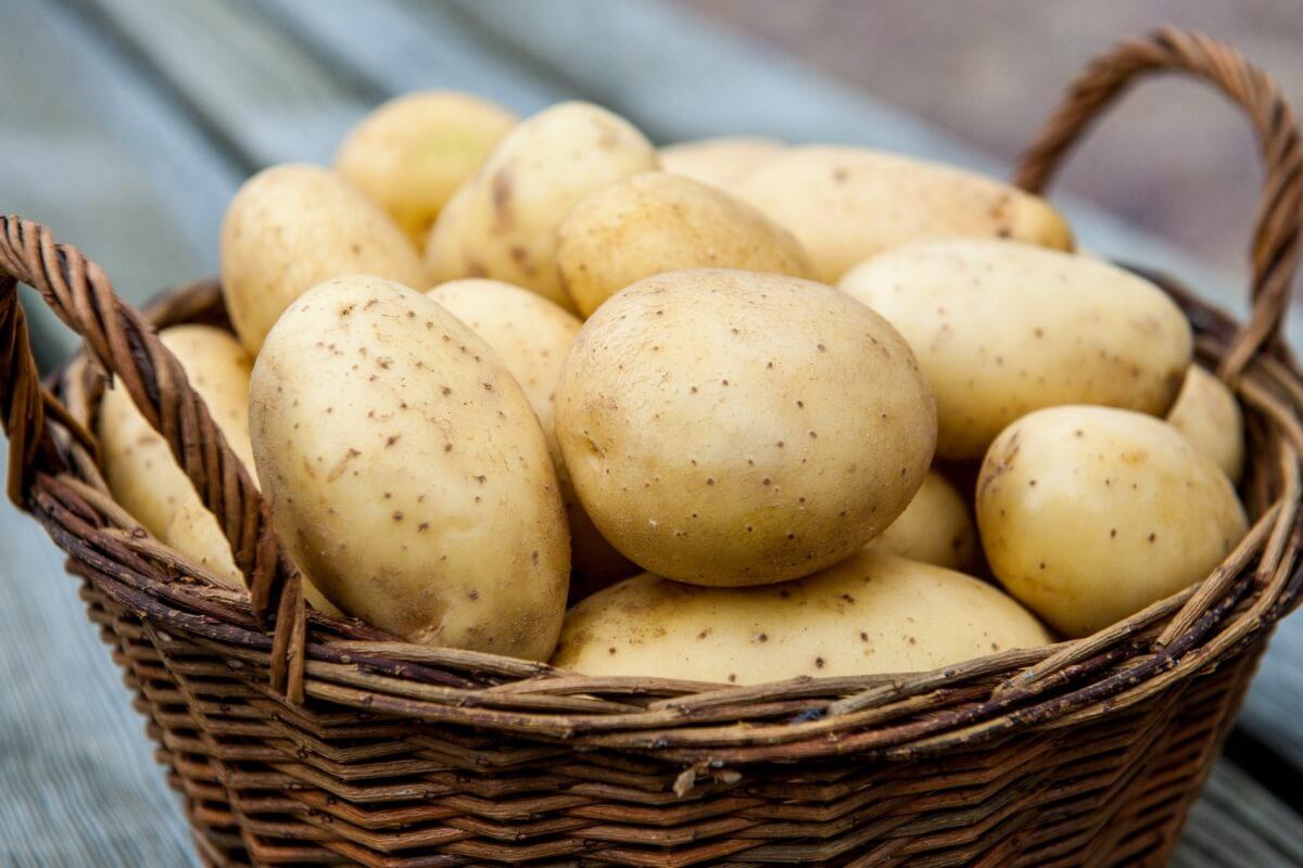 Можно ли есть картофель при похудении